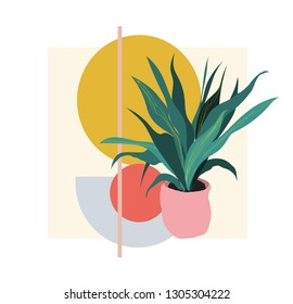 plant illustration. potted house plant vector. botanical art print. geometric background.