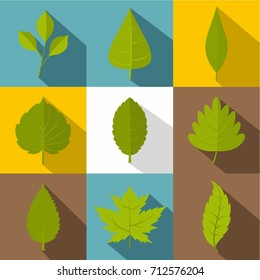 Plant leaf icon set. Flat style set of 9 plant leaf vector icons for web design