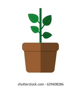 plant in a pot icon