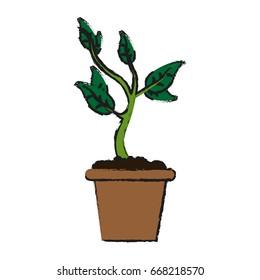 plant in pot icon image