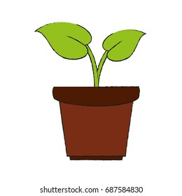 plant in pot icon image