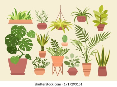 Plant in pot vector illustration set, cartoon flat different indoor potted decorative house plants for interior home or office decoration isolated. Hygge and scandinavian design plants in pots
