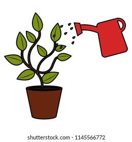 plant with sprinkler pot