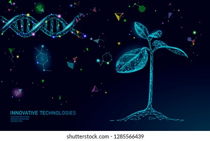 Plant sprout biotechnology abstract concept. 3D render seedling tree leaves DNA genome engineering vitamin supplement. Medical science life eco polygon triangles low poly vector illustration