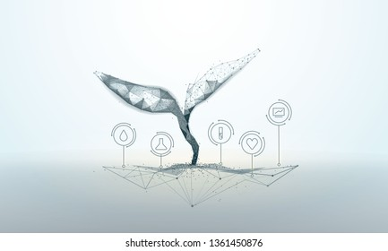 Plant sprout biotechnology. Seedling tree leaves DNA genome engineering vitamin supplement. Abstract illustration isolated on light background. Low poly wireframe. Particles are connected line