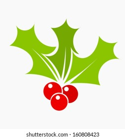 Plant symbol of Christmas holly berry vector illustration