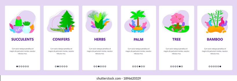 Plant types, species. Succulents, conifers, herbs, palm, tree, bamboo. Mobile app onboarding screens. Vector banner template for website and mobile development. Web site design illustration.