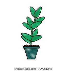 Plant in vase ornament