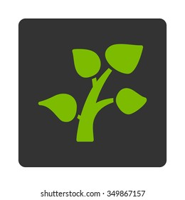 Plant vector icon. Style is flat rounded square button, eco green and gray colors, white background.
