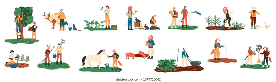 Planting crops, feeding farm animals,  milking cow, gathering harvest, collecting apples, carrying fruits, working on tractor vector illustration. Set of farmers or agricultural workers flat cartoon.