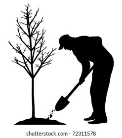 Planting a tree (vector)