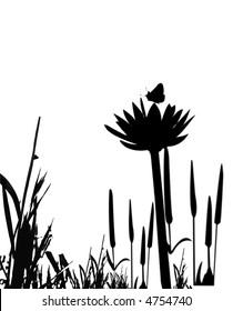 Plants in a bog or marsh