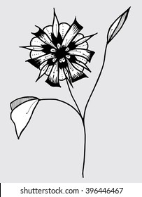 Plants. Flowers. Grass. Line art. Silhouette. Graphic arts. Drawing by hand. Black and white. Sheets. Dry grass. Wild plants. Stylized flowers. Decorative flowers.