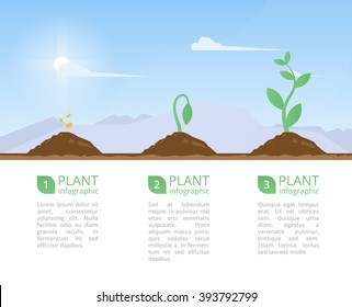 Plants Growing set and infographic with planting process plants.Plants growth on mountain landscape.