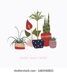 Plants. Objects of a sweet home. Home flowers. Minimalism, abstractionism, trend.
