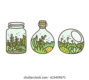 Plants in terrariums set. Moss, succulents and flowers in glass jars. Hand drawn doodle style vector illustration.