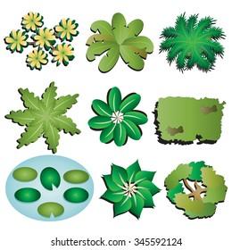 Plants and Trees top view set 6 for Landscape design, vector illustration