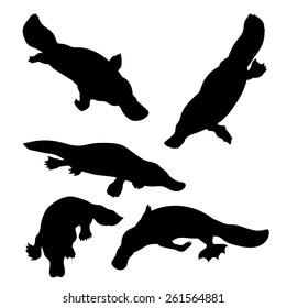Platypus set of silhouettes vector