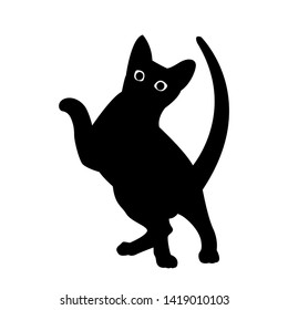 A playing cat. Black silhouette with big eyes isolated on white background. Can be used as a sticker template, logo element, icon for web design. Vector illustration.