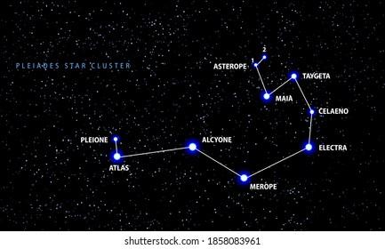 The Pleiades open star cluster. Vector scheme.
