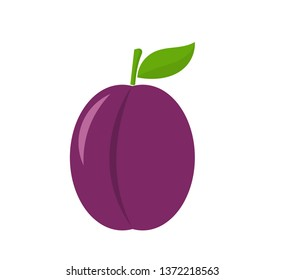 Plum fruit icon, design element. Vector illustration.
