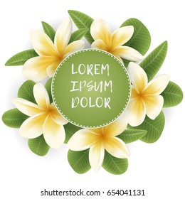 Plumeria blossom flowers and green leaves around of round frame. Circle border with tropical flowers. Card template with Plumeria flower wreath.