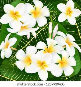 Plumeria. Exotic flower. Bouquet of exotic flowers. seamless pattern