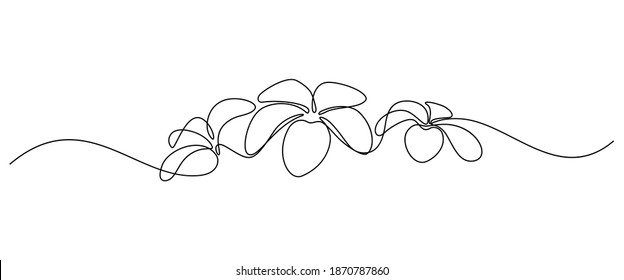 Plumeria flowers in continuous line art drawing style. Border with fragrant tropical plumeria (frangipani, jasmine) flowers. Minimalist black linear sketch on white background. Vector  illustration