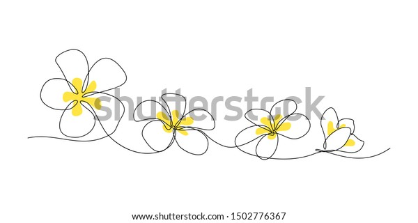 Plumeria flowers in continuous line art drawing style. Minimalist black line sketch on white background. Vector illustration