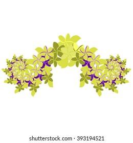 Plumeria Ornament - Green