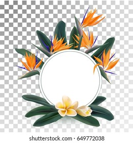 Plumeria and Strelitzia reginae flowers and green leaves vector round frame. Floral ring, wreath on transparent background. Circle border with tropical plants - bird of paradise and franipani flower.