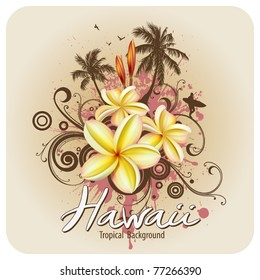 Plumeria tropical flowers