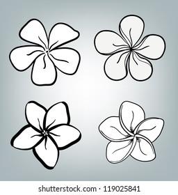 Hawaii Flower Drawing Images Stock Photos Vectors Shutterstock