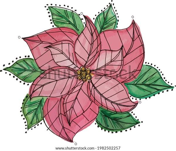 Poinsettia Flower Watercolor Christmas Vector