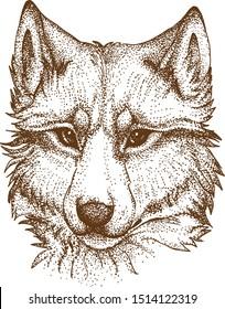 Pointillism Drawing Vektor of Dog