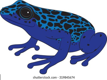 Poison Dart Frog - Vector Illustration