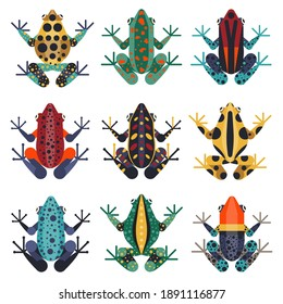 Poison dart frogs set. Multicolored poisonous tropical frogs and tree-frogs from Amazonian rainforests. Stylized geometric amphibians creatures collection.