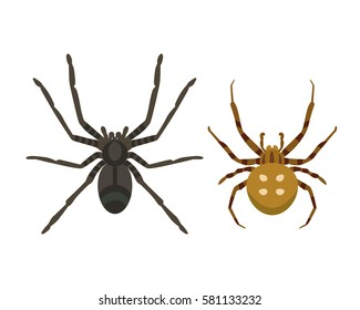 Poisonous spider silhouette arachnid fear graphic flat scary animal poisonous design nature phobia insect danger horror tarantula halloween poisonous black spider vector icon.