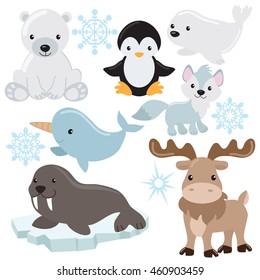 Polar animal vector illustration