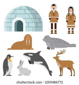 Polar, arctic animals and residents of the north near eskimo ice house. Igloo house, penguin and siberian eskimo, reindeer and walrus, vector illustration