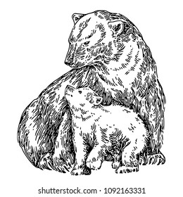 Polar bear with baby. Sketch. Engraving style. Vector illustration.