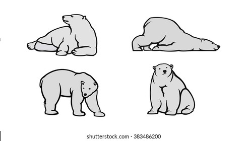 Polar bear vector illustration. Bear on white background. Polar bears. Illustration of polar bear. Polar bear on isolated background