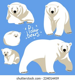 Polar Bears collection.