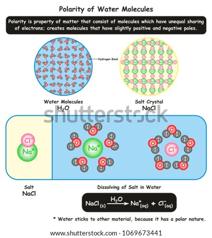 polarity water molecules infographic diagram showing stock vector Water Polarity Diagram polarity of water molecules infographic diagram showing its microscopic view along with crystal structure of salt