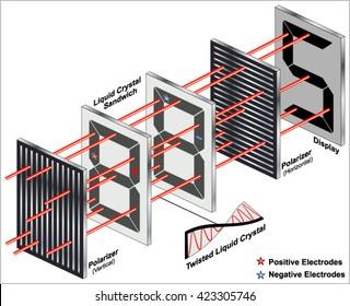 Polarization of light.   Seven-segment liquid crystal display (LCD)