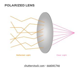 polarized lens reflect harmful light vector