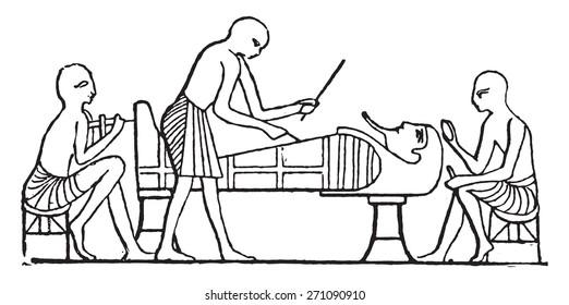 Polishing the mummy, vintage engraved illustration.