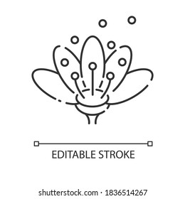 Pollen linear icon. Natural flowers reproduction. Pollination, seasonal allergy, beekeeping thin line customizable illustration. Contour symbol. Vector isolated outline drawing. Editable stroke