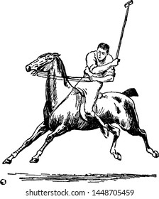 Polo vintage engraved illustration drawing.