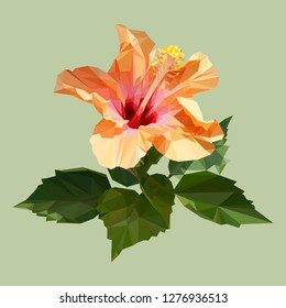 polygon orange hibiscus or chinese rose with leaves. poly low geometric triangle flower vector. isolated